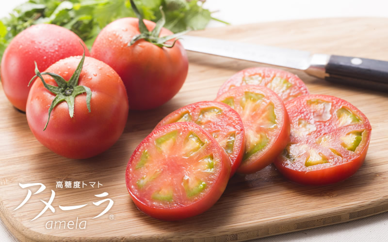 アメーラトマト公式通販ショップ